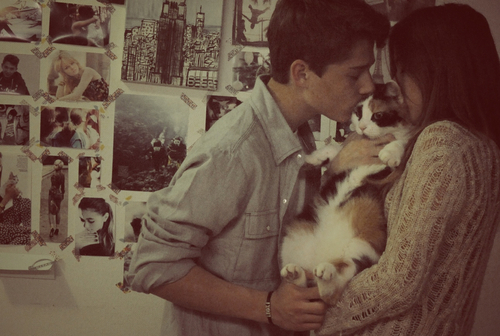 boy, cat, and couple image
