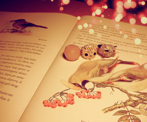 cute, book, and lights image