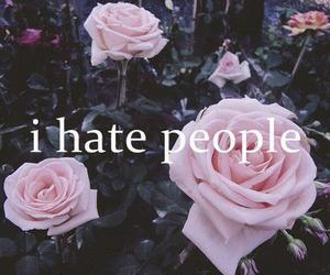 hate, people, and rose image