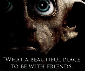 harry potter, dobby, and friends image