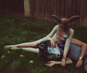 animal, couple, and wolf image