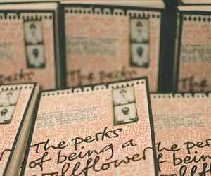 book and the perks of being a wallflower image