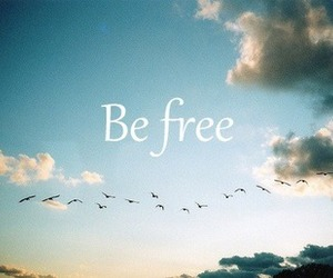 be free, fun, and happy image