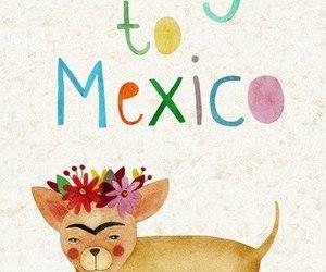 chihuahua, dog, and mexico image