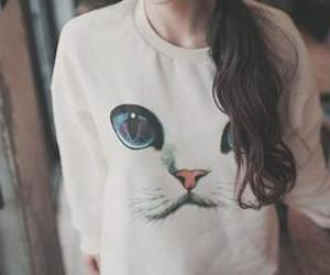 cat, hair, and sweater image