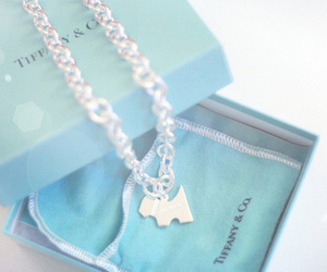 jewel, necklace, and tiffany & co image