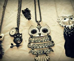 fashion and owl image