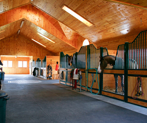 barn and stable image
