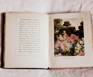 beautiful, books, and floral image