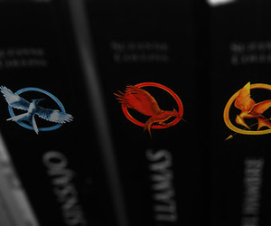 books, suzanne collins, and thg image