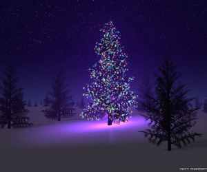 christmas, christmas tree, and natal image