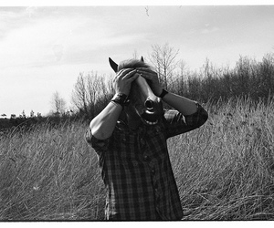 horse, 35mm film, and mask image