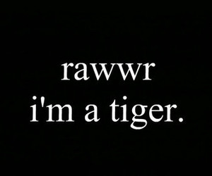 tiger, text, and rawr image