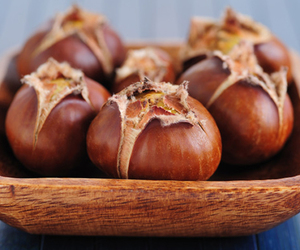 chestnut and roasted image