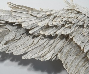 feathers, wings, and paper+wings+ image