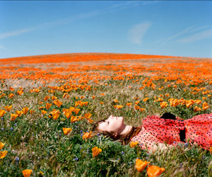 flowers, field, and girl image