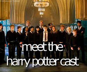 harry potter, before i die, and gryffindor image