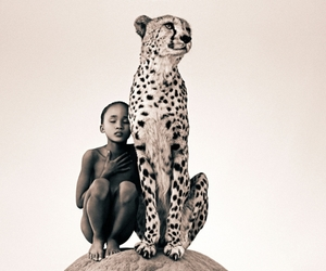 animal, cheetah, and Gregory Colbert image