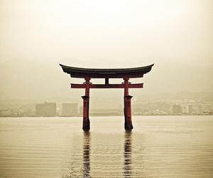 shrine, japan, and photograph image