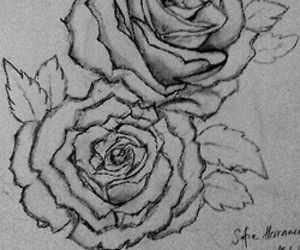 black&white and roses image