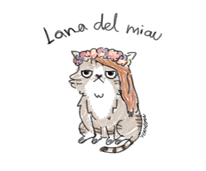 lana del rey, cat, and funny image