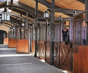 barn, horse, and stable image