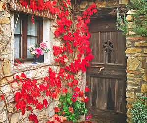 red, door, and rustic image