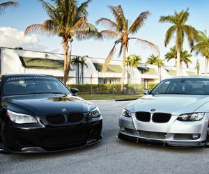 bmw, car, and palms image