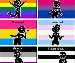 asexual, heterosexual, and sex image
