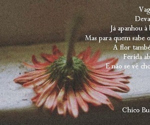 chico buarque, photography, and quote image