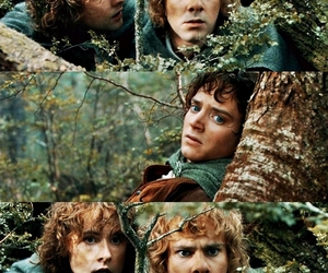 frodo, merry, and the lord of the rings image