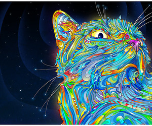 cat, colors, and trippy image