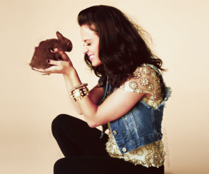 katy perry, cute, and bunny image