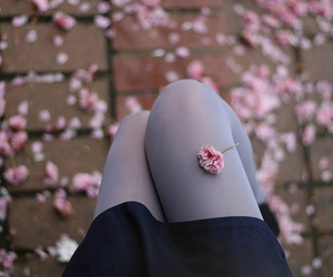 flowers, legs, and pink image