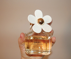 daisy, marc jacobs, and perfume image
