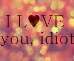 love, idiot, and I Love You image