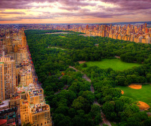beleza, greenery, and Central Park image