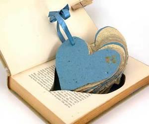 book and kniha image
