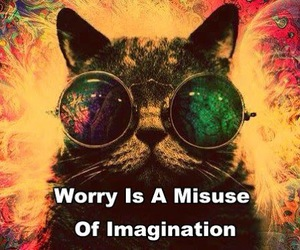 cat, imagination, and worry image