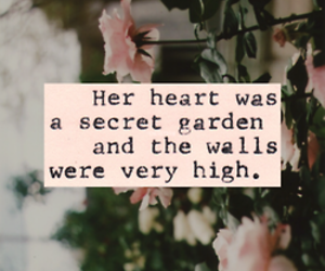 flowers and quotes image