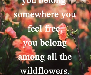 quote, flowers, and wildflowers image