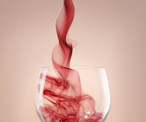 alcohol, photography, and wine image