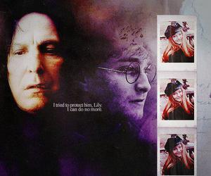 harry potter, severus snape, and lily image