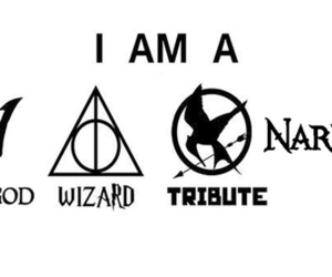 harry potter, narnia, and wizard image
