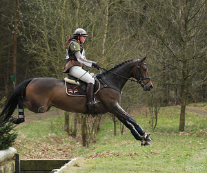 horse, jumping, and eventing image