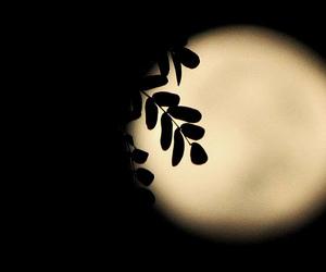 awesome, moon, and maryrazor image