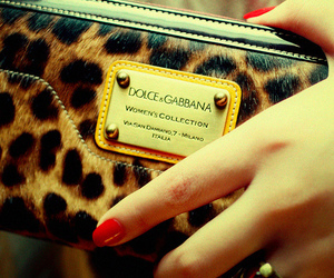 bag, dolce&gabbana, and D&G image