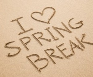 break and spring image