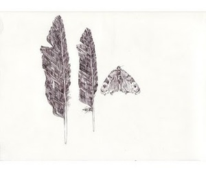 drawing, illustration, and pencil image