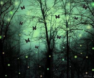 butterfly, magic, and forest image